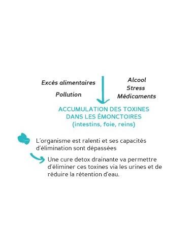 Biocyte water detox drainant 112g